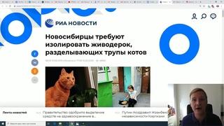 Блогер обвинил невиновную девушку в расправе над котом Мотей