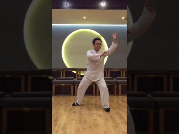 6 shi - lie shi в исполнении Мастера Ван Лина