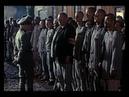 Maximilian Kolbe Leben für Leben Film