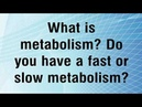 Do You Have A Low Core Body Temperature Or A Slow Metabolism?