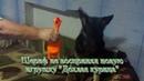 № 8 ЭТО - ШЕРИФ и история КАК Шериф новую игрушку ДОХЛАЯ КУРИЦА наотрез ОТКАЗАЛСЯ ВОСПРИНИМАТЬ