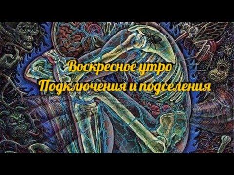 Воскресное утро Подселения и подключения