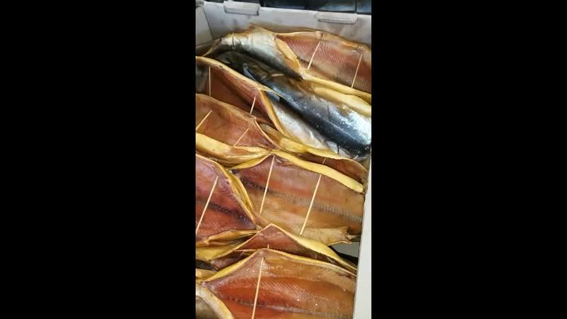 копченаяРыба ИринаРыбаКопченая❗😁👍🐟ТОЛЬКО У НАС В АЛЬМЕТЬЕВСКЕ❗ Свежее поступление и самый большой ассортимент рыбы и морепроду
