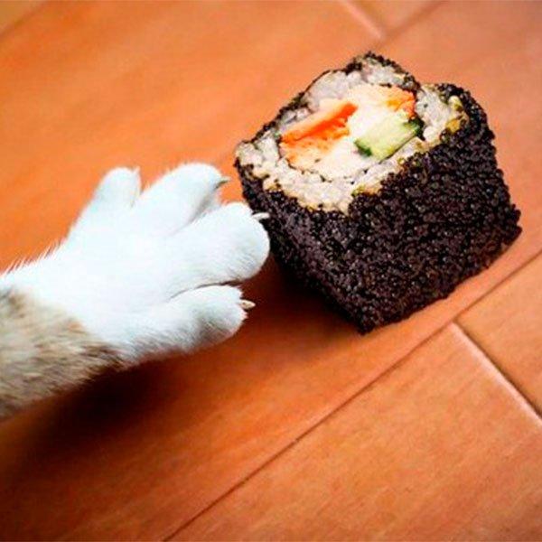 Картинки прикол суши
