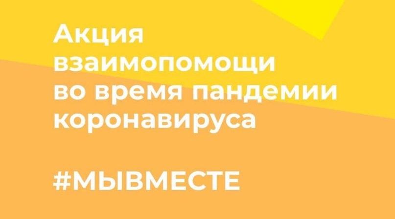 Объявлен старт всероссийской акции #Мывместе2020., изображение №3