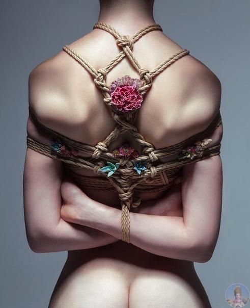 Женские тела, цветы и веревки  это проект Aaron McPolin, прославляющий красоту искусства связывания  шибари