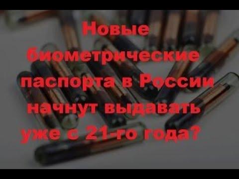 Новые биометрические паспорта в России начнут выдавать уже с 21 го года