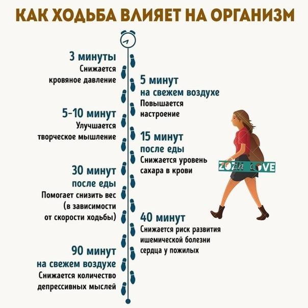 Сколько Ходить В День Чтобы Похудеть. Сколько нужно ходить пешком в день, чтобы похудеть: на 1, 5, 10 и 20 кг + отзыв с фото