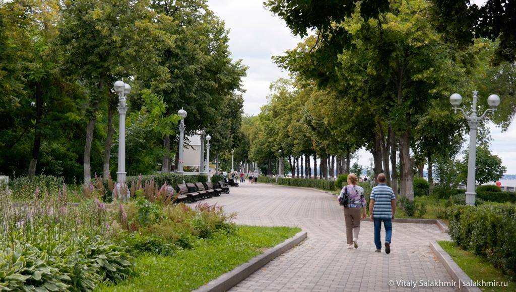 Зелень на набережной в Самаре, Россия 2020