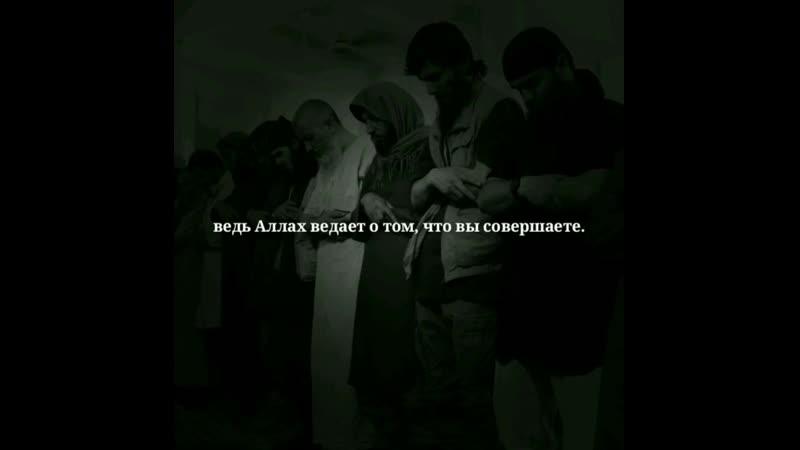 Во имя Аллаха Милостивого Милосердного.  (5918) О те, которые уверовали! Бойтесь Аллаха, и пусть душа посмотрит, что она пригот