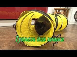 Туннель для кошек, домашних животных, игрушки для питомцев.