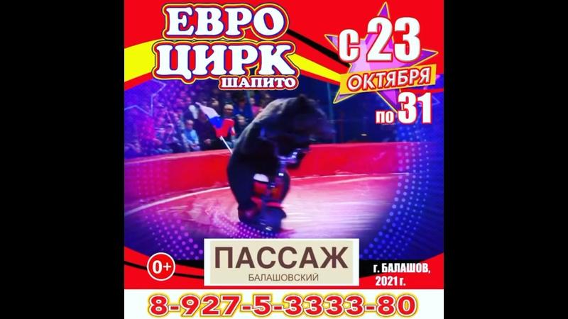 Видео от ОФИЦИАЛЬНАЯ ГРУППА ЕВРОЦИРК