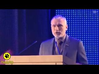 Депутат Госдумы Алексей Журавлёв о Зеленском