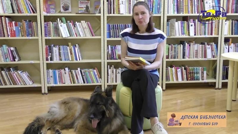 Книга на лето Собака Пес Даниэля Пеннака