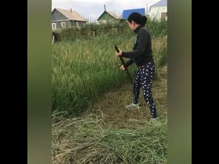 Видео от Баунтовский район