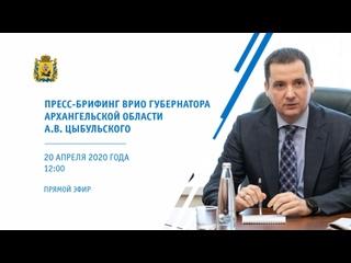 Брифинг ВрИО Губернатора Архангельской области А.В. Цыбульского от