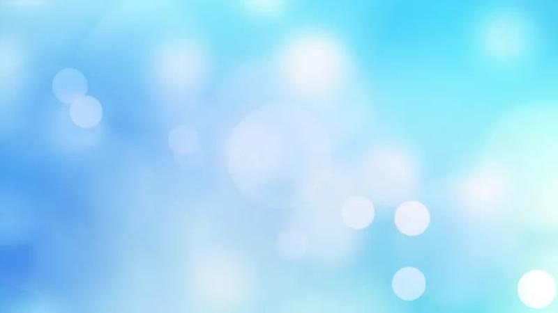 АЗАЛИЯ домашняя или РОДОДЕНДРОН - Как ухаживать после покупки.mp4