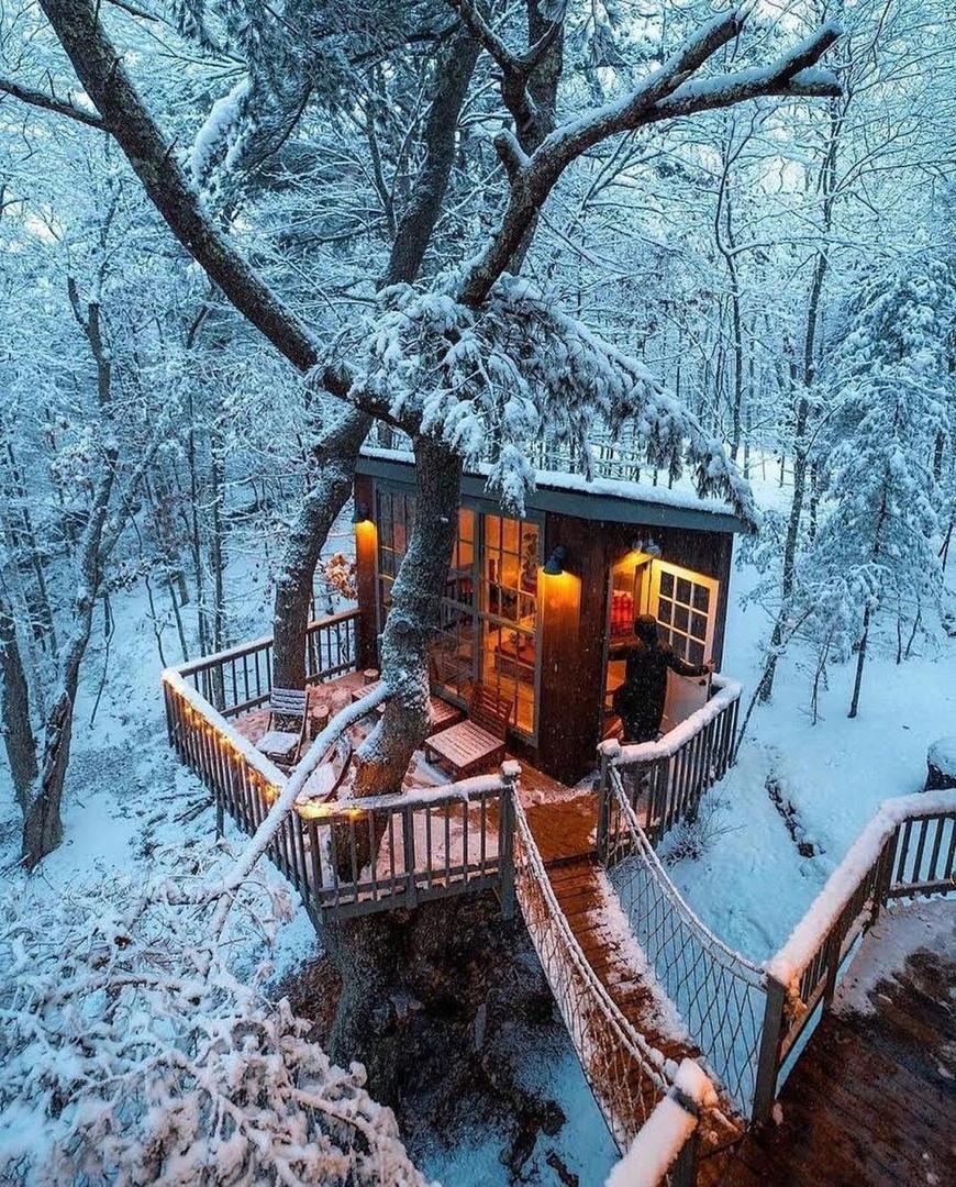 Шикарный домик на дереве