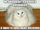 Фотоальбом Анны Кокориной