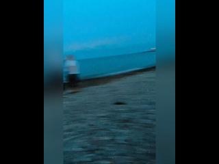 Video by Alisa Kareva