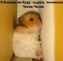 Фотоальбом Ольги Плотниковой