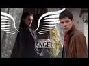 Merlin Morgana Angel