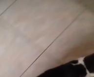id_77439 Кот ест только вместе со своей любимой игрушкой 😊