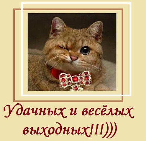 photo from album of Margarita Solodchuk №12