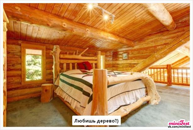 photo from album of Elіna Konvalyuk №14
