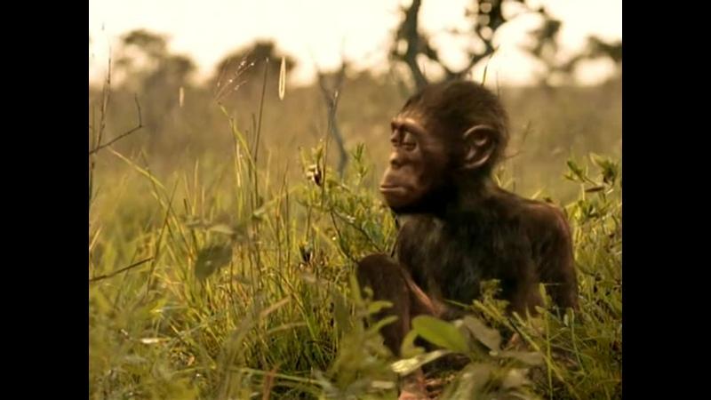 BBC Прогулки с чудовищами 2001 4 Серия Ближайший родственник