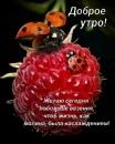 Персональный фотоальбом Сергея Строгова