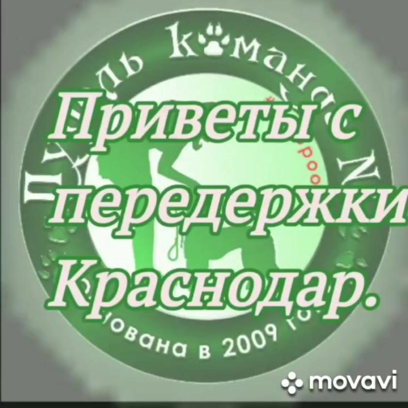 VID_62420424_200513_725.mp4