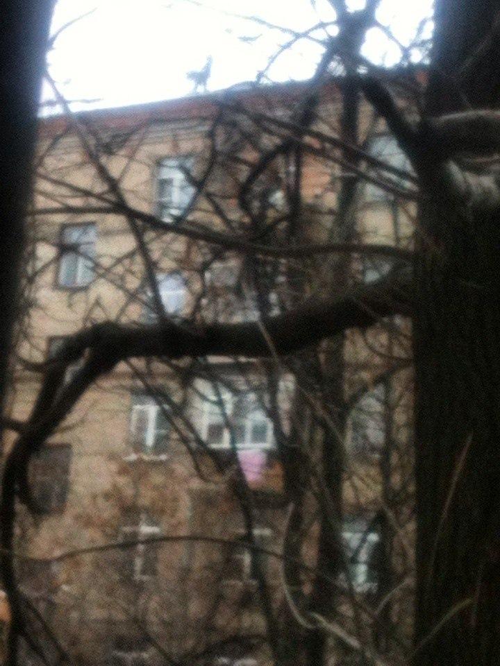 фото из альбома Павла Максимова №11