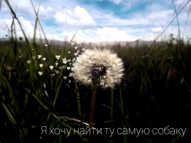 InShot_20200528_125333512.mp4