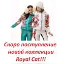Личный фотоальбом Екатерины Εршовой