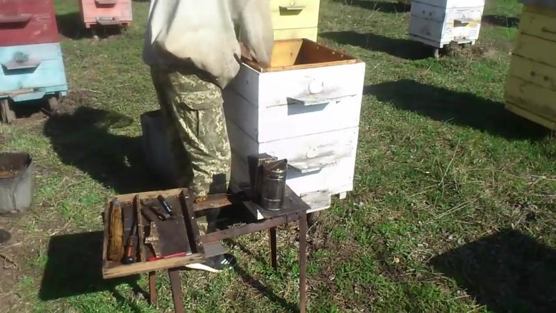 Пчеловодство. Борьба с клещом.