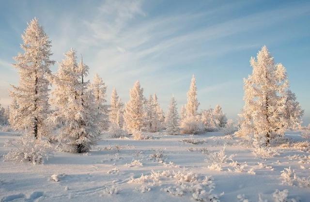 Ах, Матушка Зима! Приметы, суеверия, народные мудрости и поговорки