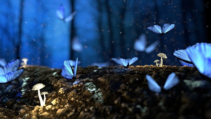 Не трогай ярко-синее стекло — таится там опасность, так и знай, в нём сохранилос...