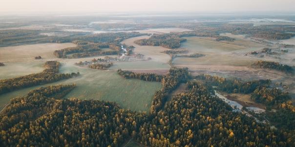 Почти 30 лесных возгораний потушили в Ивановской о...