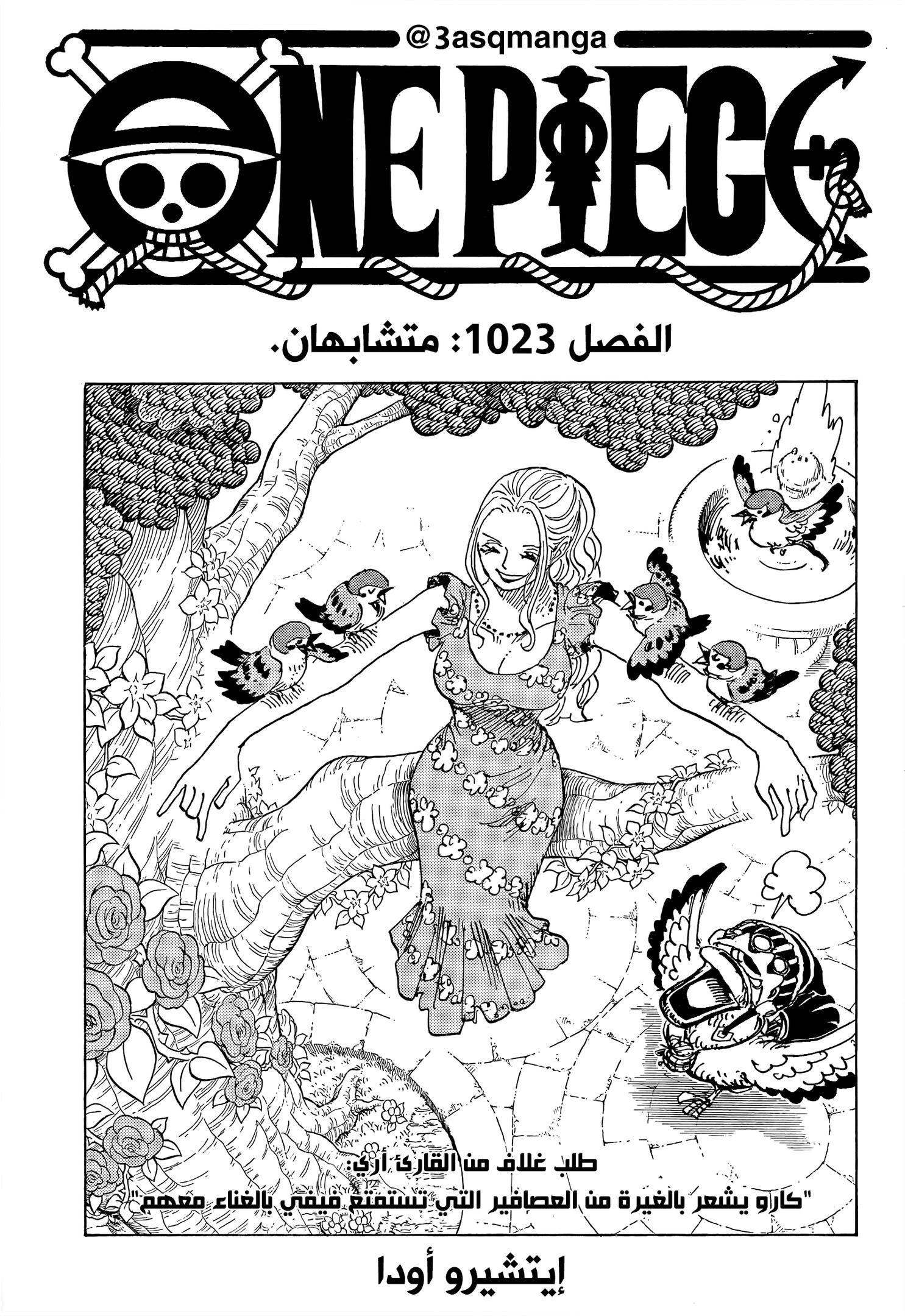 One Piece Arab 1023, image №1