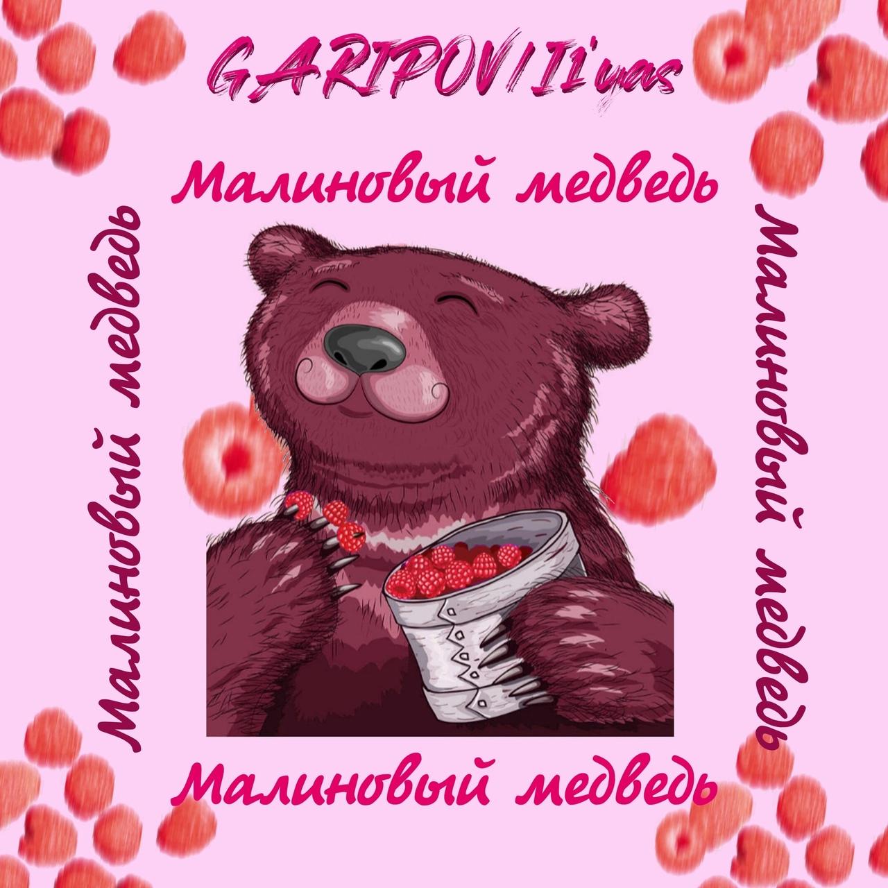 фото из альбома Раниса Гарипова №11