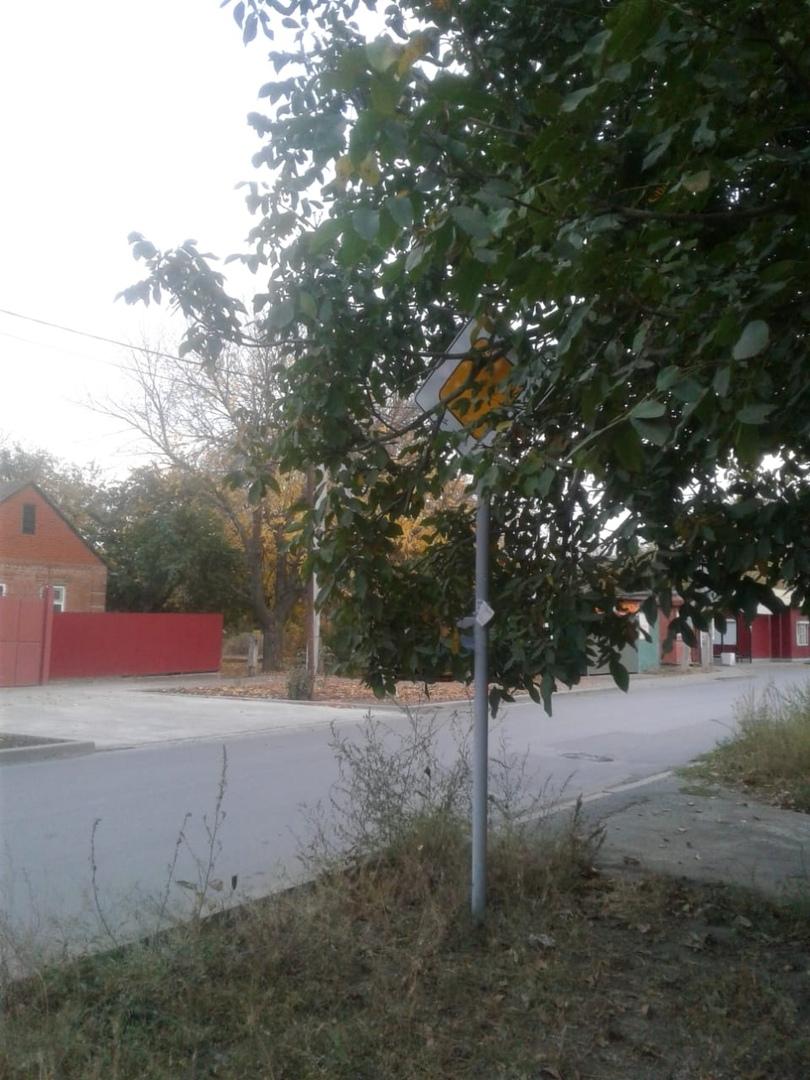 МКУ «Благоустройство»:  проведены работы по обрезке ветвей деревьев вдоль дорог