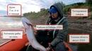 Рыбалка в Сибири 2020. Поймали рыбу, отдохнули и протестировали товары!
