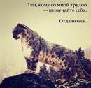 Фотоальбом человека Виктории Макеевой
