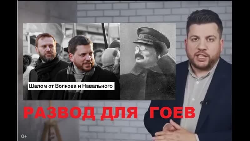 Еврей Волков готовит к тому что Навальный возглавит правительство в изгнании для гоев