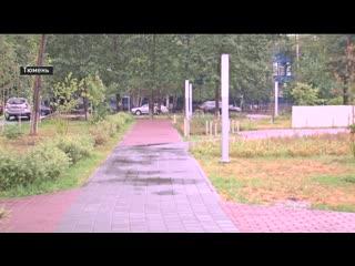 Озеленить участок на Газовиков, 23 в Тюмени планируют до середины октября