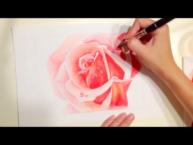 How to draw rose aquarelle как рисовать розу акварелью speed drawing