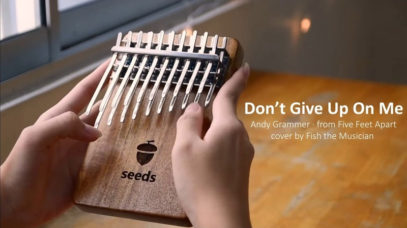 Andy Grammer Don't Give Up On Me from Five Feet Apart Kalimba cover