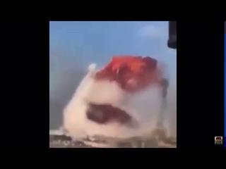 Beirut Explosion Sings Dame Da Ne (Baka Mitai)