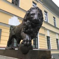 Фотография Алексея Смирнова ВКонтакте